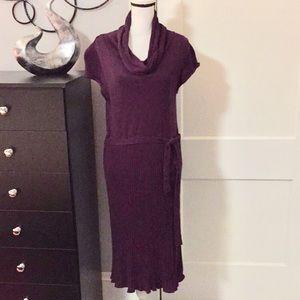***Final Price Cut**** Purple Sweater Dress